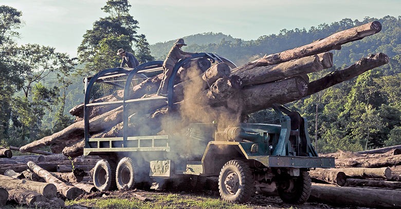 Loggers loading a truck with wood in Vietnam